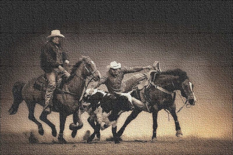 Rodeo Cowboys - Cattle Wrestling